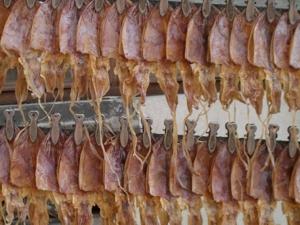 getrockneter fisch snack